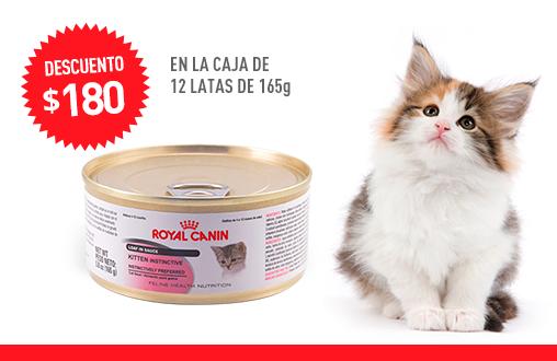 Imagen promoción Kitten Instinctive Húmedo