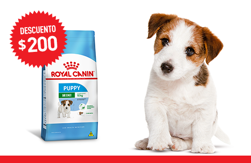 Imagen promoción Mini Puppy
