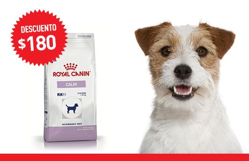 Imagen promoción Calm Dog
