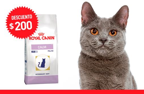 Imagen promoción Calm Cat