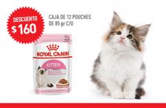 Imagen promoción Kitten Húmedo