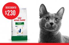 Imagen promoción Satiety Feline